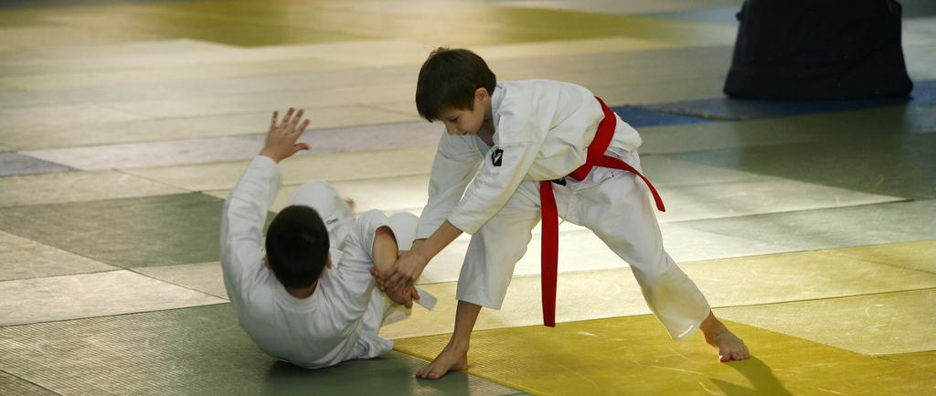 Ежегодный детско-юношеский семинар по айкидо Койнобори Додзё