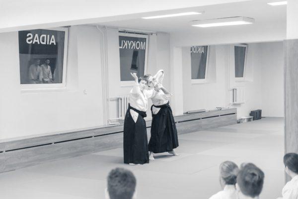 Lithuania Seminar 1120171