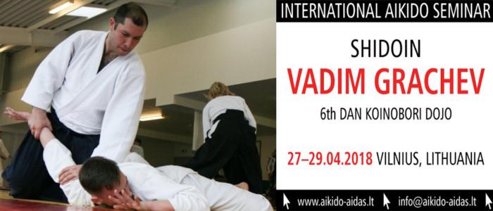 Весенний семинар В. И. Грачёва (6 дан) в Литве