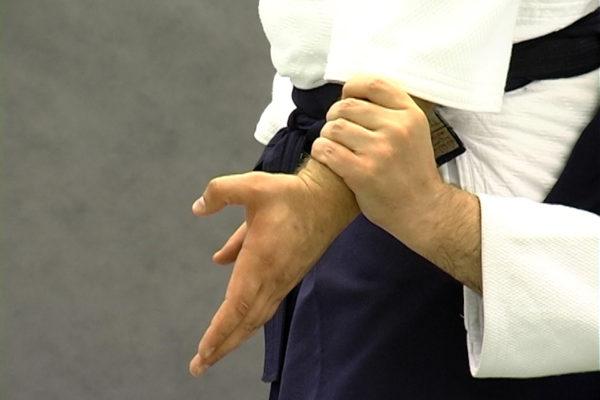 ushiro ryote dori enlarged
