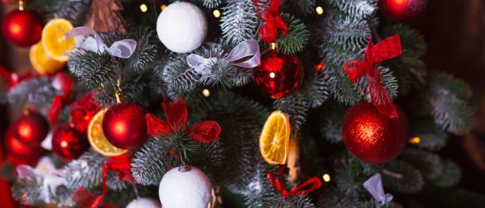 Новогоднее поздравление Президента Койнобори Додзё сихана М.Л.Карповой (6 дан)